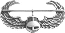 Air Assault Badge.